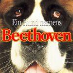 Отзыв на фильм Бетховен / Beethoven (1992)